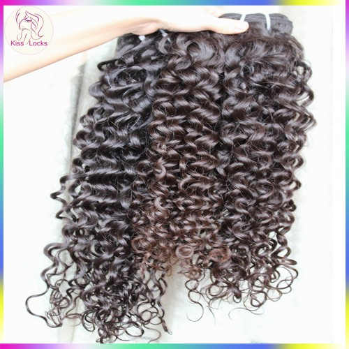 Sexy Lady Anti Bouncy Curly 10a Raw virgin Burmese Temple Hair No Tangle No Shedding Human Hairs Wefts 3pcs/lot