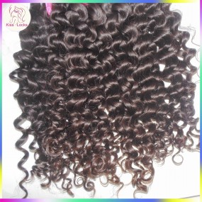 Fashion Romance Bouncy Curly Virgin Unprocessed Malaysian Hair Extensions 4pcs/lot Top 10A Lower maintenance